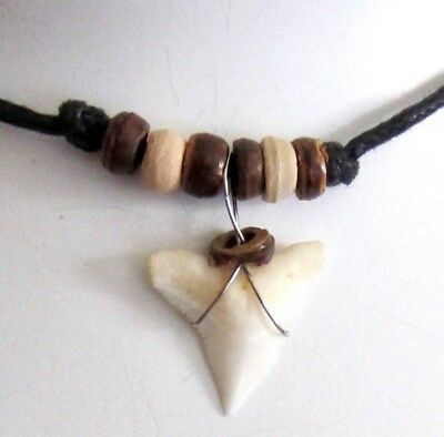 Real Shark Tooth Teeth Charm Pendant Cord Necklace Beads Surf Beach Boy Girl New