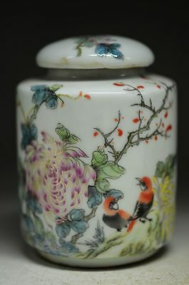 Boutique Chinese Colorful Porcelain Hand Painted Bird & Flowers Tea Caddy Ad7