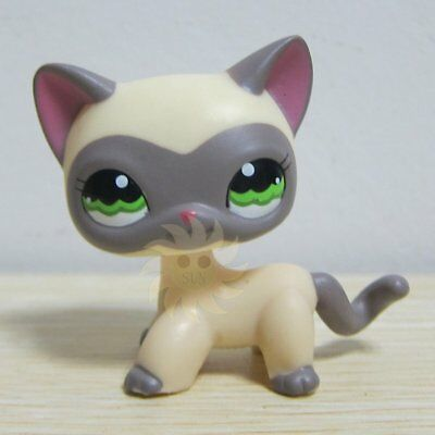 Hasbro Littlest Pet Shop Collection LPS #1116 Cream Gray Masked Short Hair Cat Z
