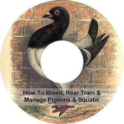 Breeding Rearing How To Breed Rear Train & Manage Pigeons & Squabs Books on CD