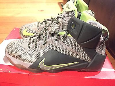 2014 Youth Nike LeBron XII 12 Dunk Force Grey Green Size 7Y Used Rare NDS