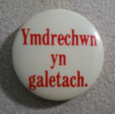 "Avis ""Ymdrechwn Yn Galetach"" Welsh ""We Try Harder"" Advertising Pin - Plymouth"