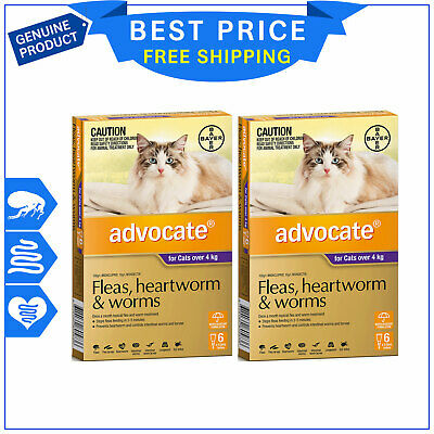 ADVOCATE for Cats Over 4 Kg PURPLE Pack 12 Pipettes + FREE 4 Pipettes by Bayer