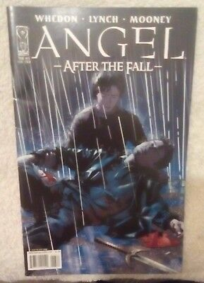 """Angel Comic- """"After the Fall"""" Series, Issue# 13"""