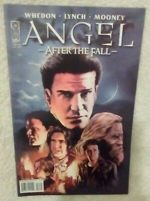 """Angel Comic- """"After the Fall"""" Series, Issue# 14"""