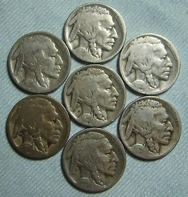 1920 S 1923 S 1924 D 1924 S 1925 D 1925 S 1926 D Buffalo Nickel Lot, Collection