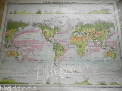 Original c1925 Antiquarian Times Map of World Vegitation and Ocean Currents