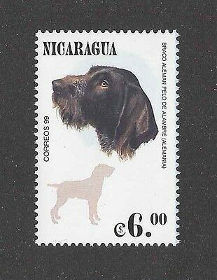Rare Dog Art Head Body Postage Stamp GERMAN WIREHAIRED POINTER Nicaragua MNH