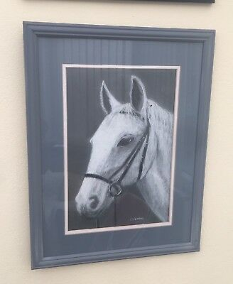 Beautiful Framed Picture Of A Grey Horse By Local Artist V L Dootson