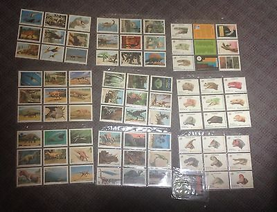 1992 DinoCardz Series One Trading Card Set Complete 1-80 Cards w/3 Wrappers