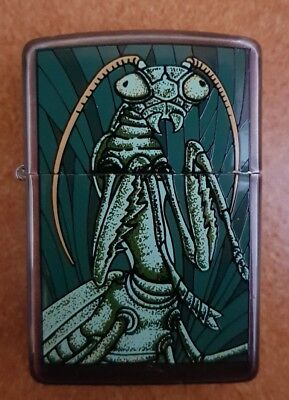 zippo backard insects