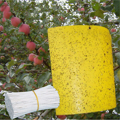 5~30PCS Sheets Yellow Hanging Sticky Glue Flying Pest Insect Bug Trap Catchers