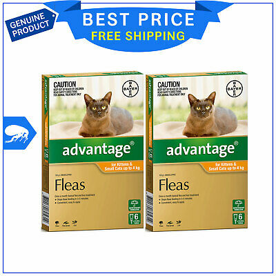 ADVANTAGE for Cats Upto 4 Kg ORANGE Pack 12 Pipettes + FREE 4 Pipettes by Bayer