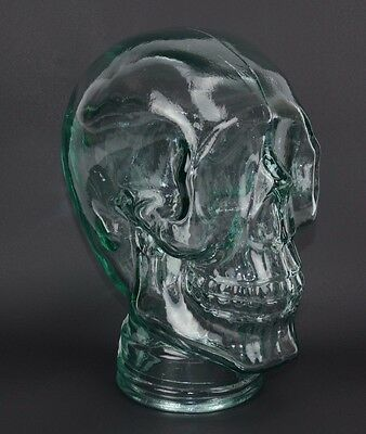 Glass Skull Mannequin Head Display Clear Life Size Hand Made Spain Halloween New