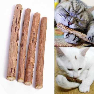 8Pcs Cat Snacks Matatabi Chew Catnip Stick Teeth Molar Cleaning Brush Pet Toy