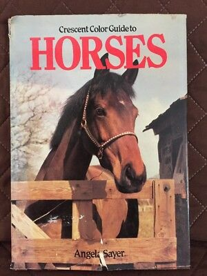 Hardback Book Crescent Color Guide to Horses 1980