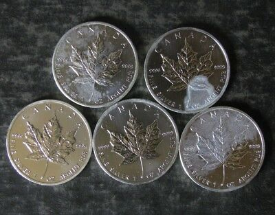 Five (5) Canada 2013 Maple Leaf 1 oz Silver 9999 Fine Coins - No Reserve
