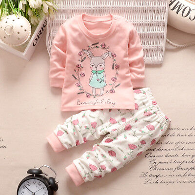 Newborn Infant Baby Kids Girl Long Sleeve Tops T-Shirt+Pants Outfit 2PCS Clothes