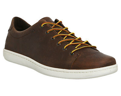 Mens Timberland Brown  Leather Lace Up  Casual Shoes UK Size 10 *Ex Display