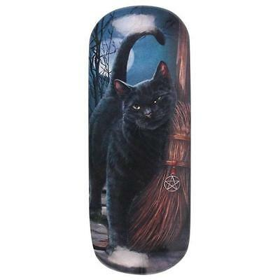 Lisa Parker Hard Glasses Case Black Cat Amazing Fun Fantasy Love Heart Magic