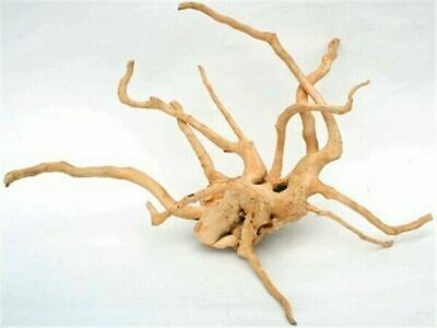 Spider Wood Driftwood Aquarium and Reptile Natural Ornament Decor Medium 35-50cm