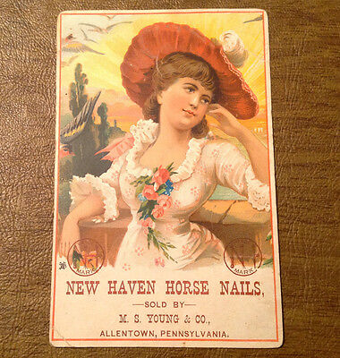 New Haven Horse Nails sold by M.S. Young & Co. Allentown PA Trade Card