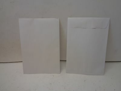 "Qty = 1 box of 500: White Wove Catalog Envelop 9-1/2"" x 6-1/2"" WW70002"