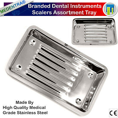 Professional Dental Instrument Scalers Tray Dish Dentistry Laboratory Tools Rack
