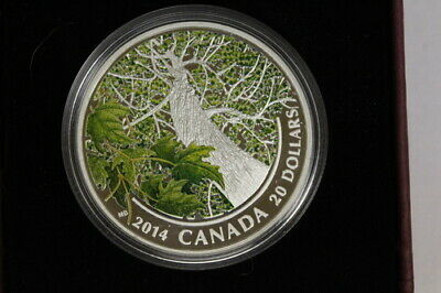 Royal Canadian Mint - 2014 $20 Maple Canopy - Spring Splendour .9999 Silver Coin