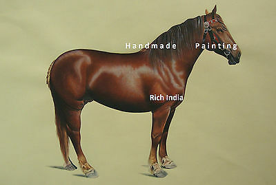 Arabian Horse Realistic Painting Art Water color Handmade Artwork Race court
