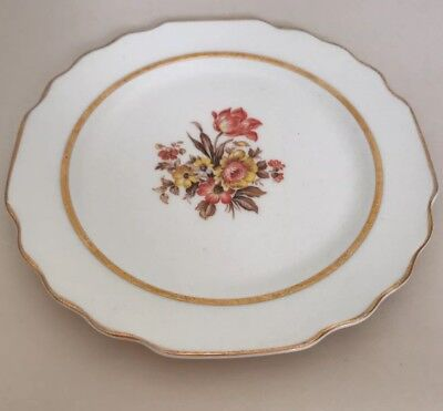 """VINTAGE """"Floral Gold Rim"""" W.S. George White Lido 6-3/4"""" Plate Fall Colors"""