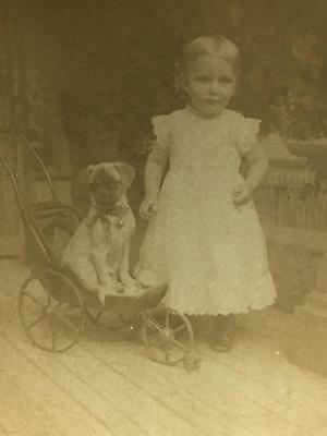 *Antique 1891 Strohmeyer Sepiatone Stereoview PUG in Baby Buggy & Little Girl #2