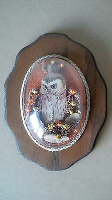 """Scuptured Owl Wall Art on a Wood Plaque with rounded Clear Cover 8""""x6"""""""