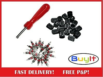 Best Value 20 Metal Schrader Valve Cores Repair Set