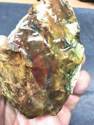Morrisonite Jasper Rough 13oz Lapidary Cabbing Slab Agate Red Green Pink