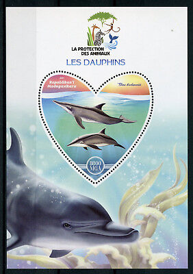 Madagascar 2017 MNH Dolphins 1v S/S Dauphins Marine Mammals Animals Stamps