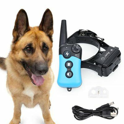 Ipets 900ft Remote Pet Dog Shock Collar Rechargeable Waterproof Training Collar