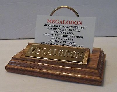 """MEGALODON SHARK TOOTH TEETH 5"""" FOSSIL DISPLAY STAND Tooth Not Included :-)"""