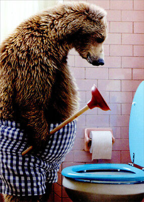 Avanti Bear With Toilet Plunger Funny Fathers Day Card for Dad