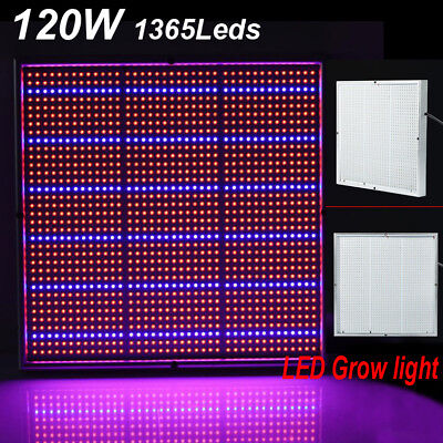 120W LED Plant Grow Light Kits lamp for Indoor Flower Vegs Hydroponics System