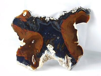 Large Unique Natural Agate Crystal Slice Table Centerpiece Decor Gift 9""