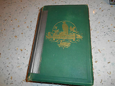 Birds of New England RARE antique book 1869