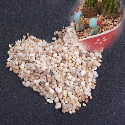 Just Stepping Stone for Dollhouse Micro Landscape Miniature Decor Fairy Gardens
