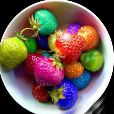 50/100Pcs Strawberry Seeds Red Black Blue Everbearing Fruit Plants W