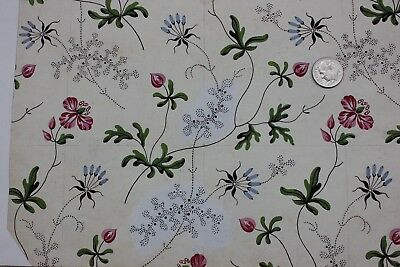 Rare 18thC Antique French HandPainted Floral Watercolor Apparel Design~Botanical