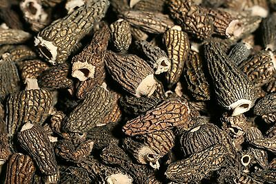 3 lbs - Dried Morels *SALE* Top Grade - Wild Mushrooms, Fresh and Canadian !