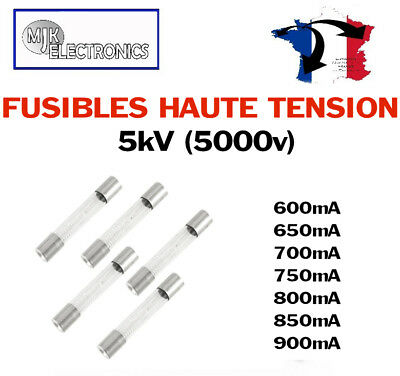 Fusible Haute Tension (Fusible Micro-ondes) 5KV 0.6 0.65 0.7 0.75 0.8 0.85 0.9