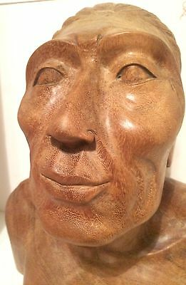 "NATIVE AMERICAN HAND-CARVED INDIAN HEAD Wood BUST By MASTER Lakota Sioux 16""X14"""
