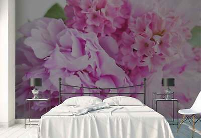 Flowers Pink Nature Photo Wallpaper Wall Mural (FW-1028)