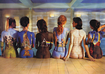 Pink Floyd Back Catalogue Nude Women Album Covers Poster